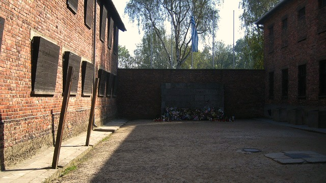 Photo of the week the auschwitz death wall