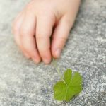 A Three Leaf Clover - Imperfect But Amazing